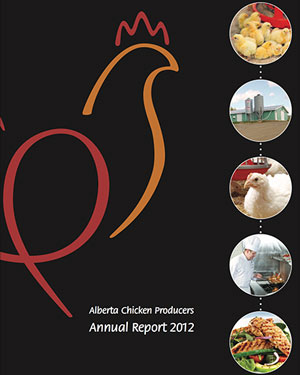 2012-report-cover
