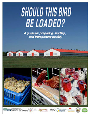 A Guide for Preparation, Loading & Transporting Poultry